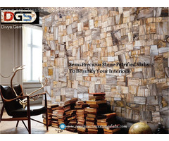 Petrified Wood Slabs Divya Gem Stonex